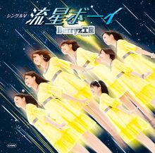 WatashinoMirainoDannasama-dvd