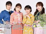 Country Girls Live 2019 ~Itooshikutte Gomen ne~