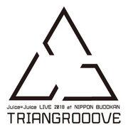 JuiceJuice-LG2018TRIANGROOOVE-logo