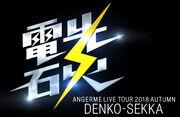 ANGERME-LiveDenkousekka-logo