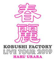 KobushiFactory-HaruUraraLive-logo