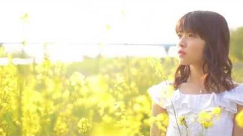 金澤朋子DVD「Greeting ~金澤朋子~」ダイジェスト