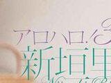 Alo-Hello! 3 Niigaki Risa DVD