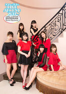 JuiceJuice-LIVEAROUND2017Budokan-visualbook