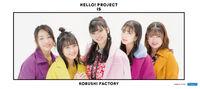 KobushiFactory-H!P2020Winter-mft