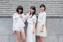 Mainhachikin2016n