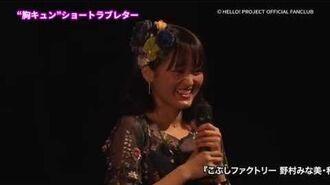 DVD『こぶしファクトリー 野村みな美・和田桜子バースデーイベント2019』