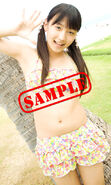 Sample 03 riho 2011