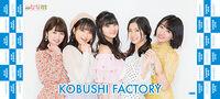 KobushiFactory-HinaFes2019-mft