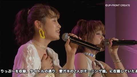 【DVD】高橋愛・新垣里沙FCイベント 愛ガキDISCO2018~たいむすりっぷ~