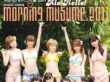Alo-Hello! Morning Musume Shashinshuu 2011