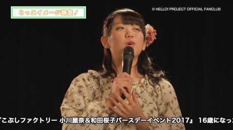 DVD『こぶしファクトリー 小川麗奈&和田桜子バースデーイベント2017』