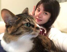 MichishigeSayumi-ItoshinoParisNeko2-preview03