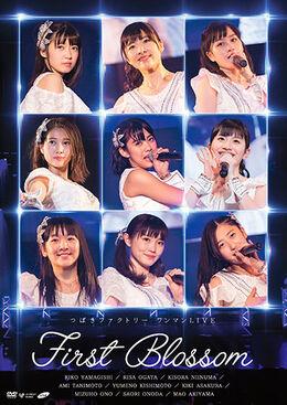 TsubakiFactory-FirstBlossom-DVD