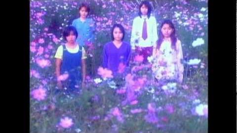 Morning Musume - Ai no Tane (MV)