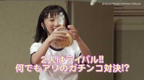 DVD『カントリー・ガールズ 梁川奈々美&船木結FCイベント2016』