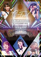 Cute-CFesBudokan-DVDcover