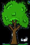 Chestnut Tree Medium