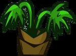 Tropical Tree Small