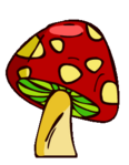 Red Mushroom Medium