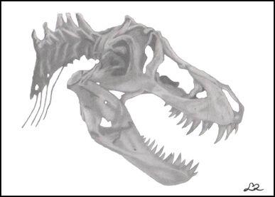 T Rex Skull by LauRa547