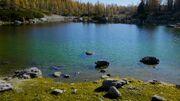 Lake Swellview Above