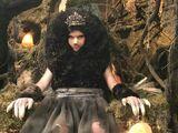 Mole Queen