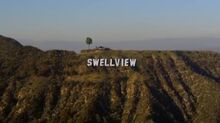 Clean Swellview sign