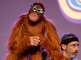 Professor Ape
