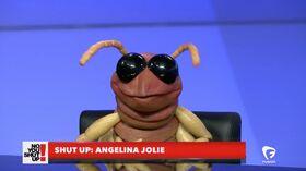 Bo Beetle