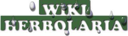 TitleWiki