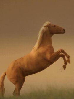 Argo horse