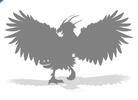 Dawn Thunderbird