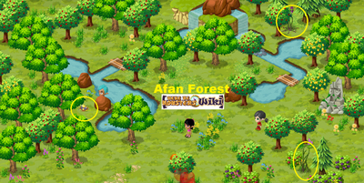 Afan Forest Hunt