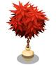 Red Bush Pot Plant