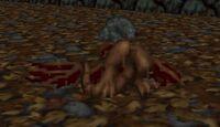 Death Wyvern remains