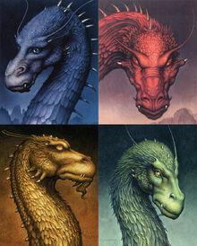 Dragon eragon