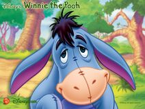 Igor-el-burro