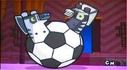 Zebrafootball
