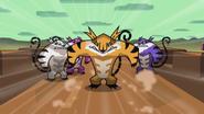 Tiger King 011