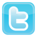Twitter-icon-vector