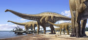 Diplodocus Raul Martin