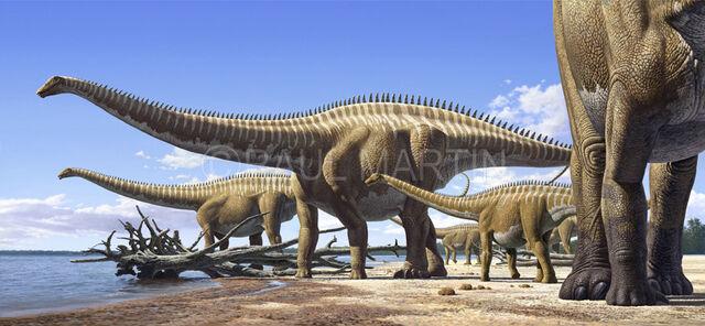 File:Diplodocus Raul Martin.jpg
