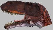 Torvosaurus head