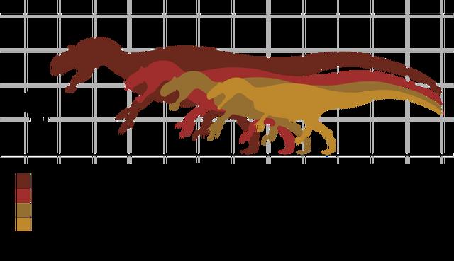 File:Allosaurus specimen.png