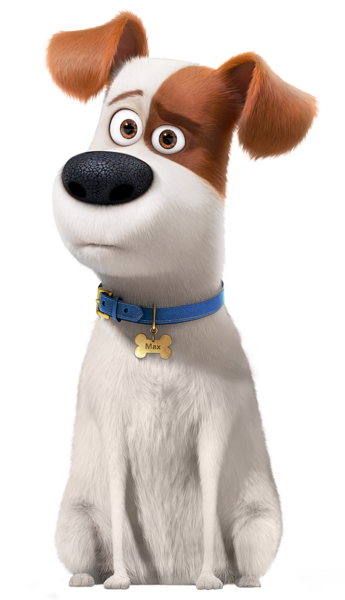 Secret Life Of Pets What Kind Of Dog Is Max