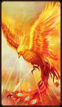 Hero-phoenix