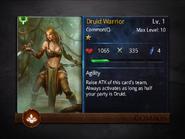 Druid Warrior1