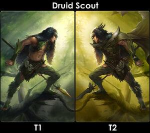 DruidScoutEvo