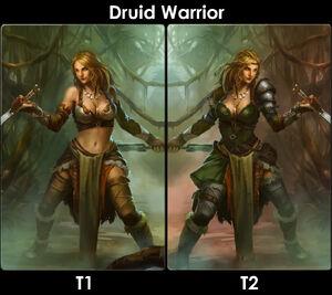 DruidWarriorEvo